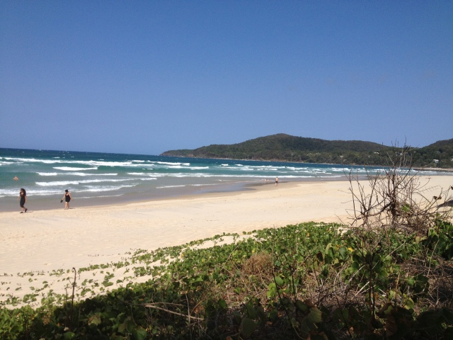 Noosa beach today